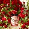 Dolce & Gabbana Dolce Rose Eau De Toilette 30 ml