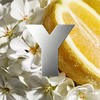 Yves Saint Laurent Y Eau Fraîche Eau De Toilette 60 ml